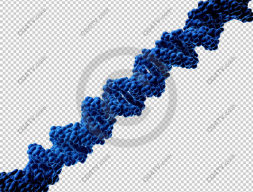 DNA On Transparent Background high resolution