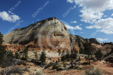 Zion park Checkerboard Mesa
