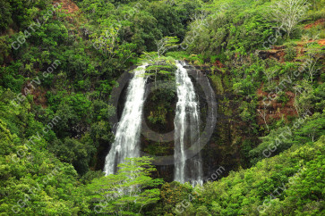 Waterfall in Hawaii's Forest high resolution
