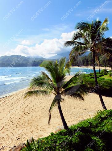 Kauai Beach Photo
