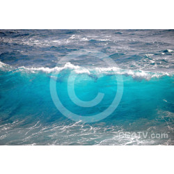 Sea Wave Photo