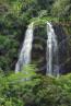 Kauai Waterfalls - Opaeka'a Fall